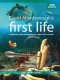 Documentary  /  Bbc Earth DVD First Life