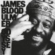 Ulmer, James Blood Odyssey