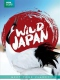 Documentary  /  Bbc Earth DVD Wild Japan