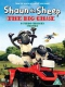 Animation Shaun the Sheep the Big..