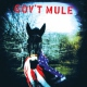 Gov´t Mule Gov´t Mule -deluxe/ltd- (12in)