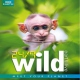 Documentary  /  Bbc Earth DVD 24/7 Wild