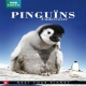 Documentary  /  Bbc Earth DVD Pinguins Undercover