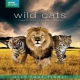 Documentary  /  Bbc Earth DVD Wild Cats Box