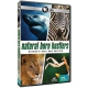 Documentary  /  Bbc Earth DVD Natural Born Hustlers