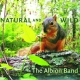 Albion Band Natural and Wild
