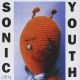 Sonic Youth Dirty -15 Tr.-