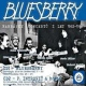 Bluesberry CD Nahr�vky  koncert� z let 1982-1984