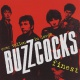 Buzzcocks CD Ever Fallen In Love