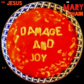 Damage And Joy (Jesus & Mary Chain)