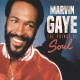 Gaye, Marvin CD The Prince Of Soul