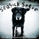 Seasick Steve Vinyl You Can't Teach An Old Dog New Trick