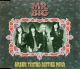 Mr. Big CDSIN Green tinted sixties mind (#7860402)